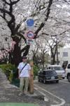 Sakura200704011_1