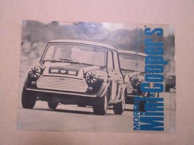 Mini20200619-1